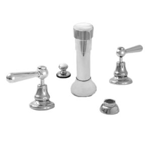 Bidet Set with 484 Handle