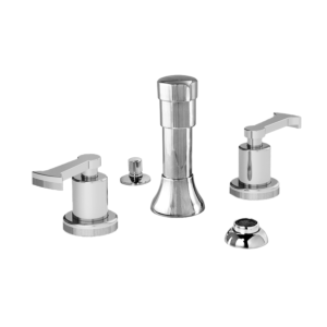 Bidet Set with Piston Handle