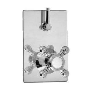 E-Mini Thermostatic - Integrated Rectangle Plate - Trim only with Salem handle